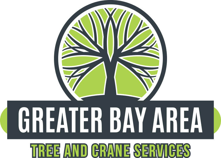 Greater Bay Tree and Crane Services
